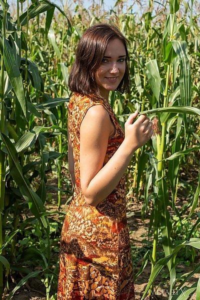 Corn Field featuring Oxana Chic by Tora Ness