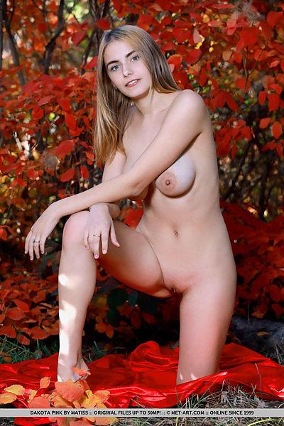 Dakota Pink in Blooms by Matiss