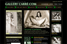 Gallery Carre screenshot