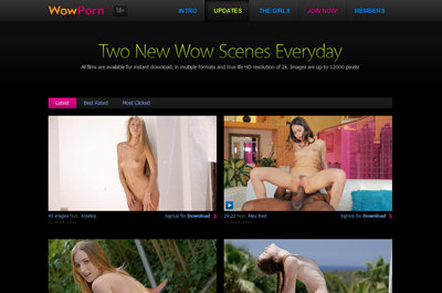 Black friday special from Wow Porn