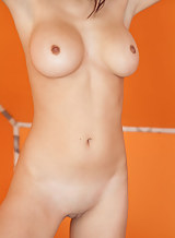 Shaved brunette with big tits and small nipples