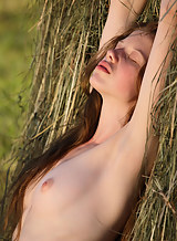 Shaved redhead nude by a haystack